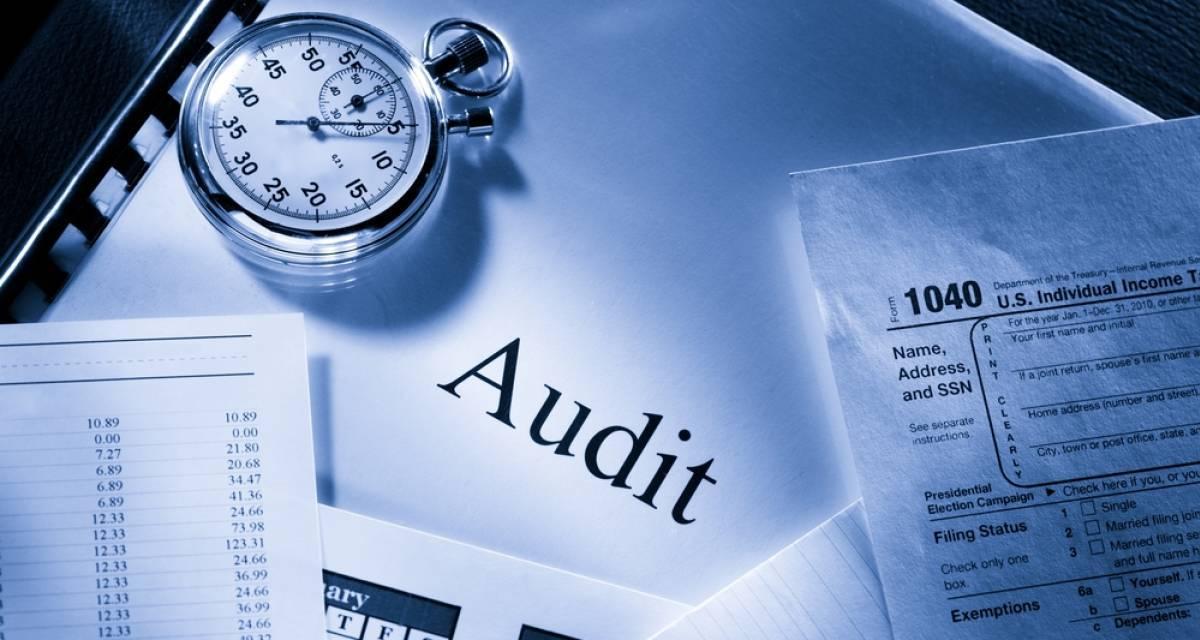 Maîtriser les Techniques de l'Audit Interne   -