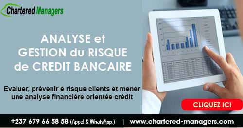 Analyse et Gestion du Risque de Crédit  - Evaluer et prévenir les Risques Clients grâce au Diagnostic Financier Spécifiquement  Crédit