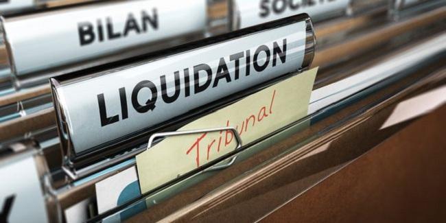 Pratique et Contentieux du Cautionnement Comme Garantie des Engagements Commerciaux, et du Crédit  -