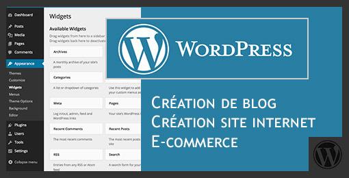 Creer et Animer Un Site Web ou un Blog Avec WordPress - Maitriser les Savoir-faire et outils pour concevoir, construire et faire connaitre un blog professionnel en toute autonomie afin de booster votre business et votre image de marque ou partager votre passion/votre expertise en ligne.